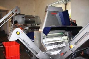 Optical sorting line 300x200 Produce, make Red or White Wine in Bordeaux or Other Areas Explained