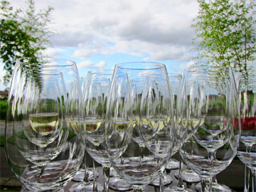 Bordeaux wine Glasses blue sky