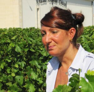 2009 Beausejour Becot Harvest 300x295 Stephan von Neipperg 2009 St. Emilion is a Historic Bordeaux Vintage!