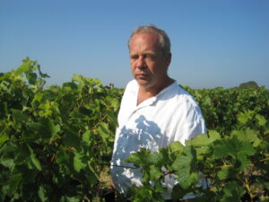 Derenoncourt harvest 300x225 Stephan von Neipperg 2009 St. Emilion is a Historic Bordeaux Vintage!