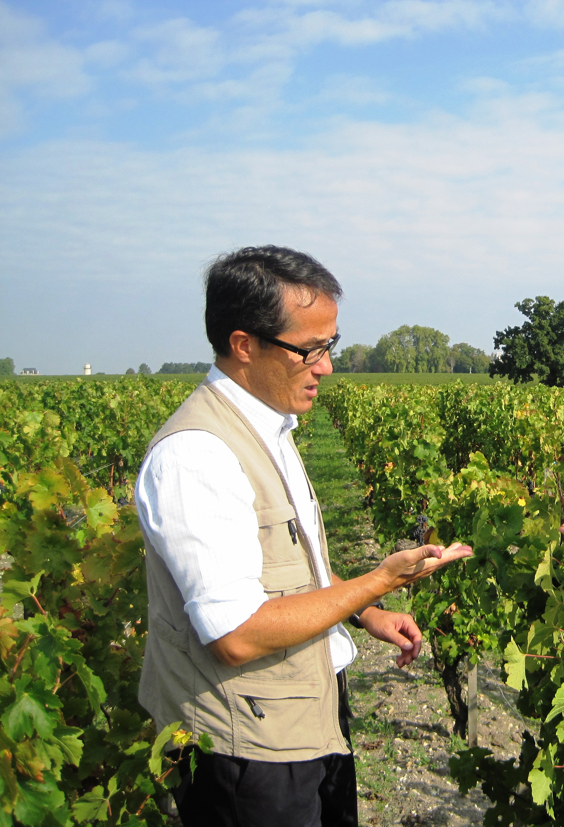 2010 Pichon Lalande Harvest, Thomas Do Chi Nam Optimistic!
