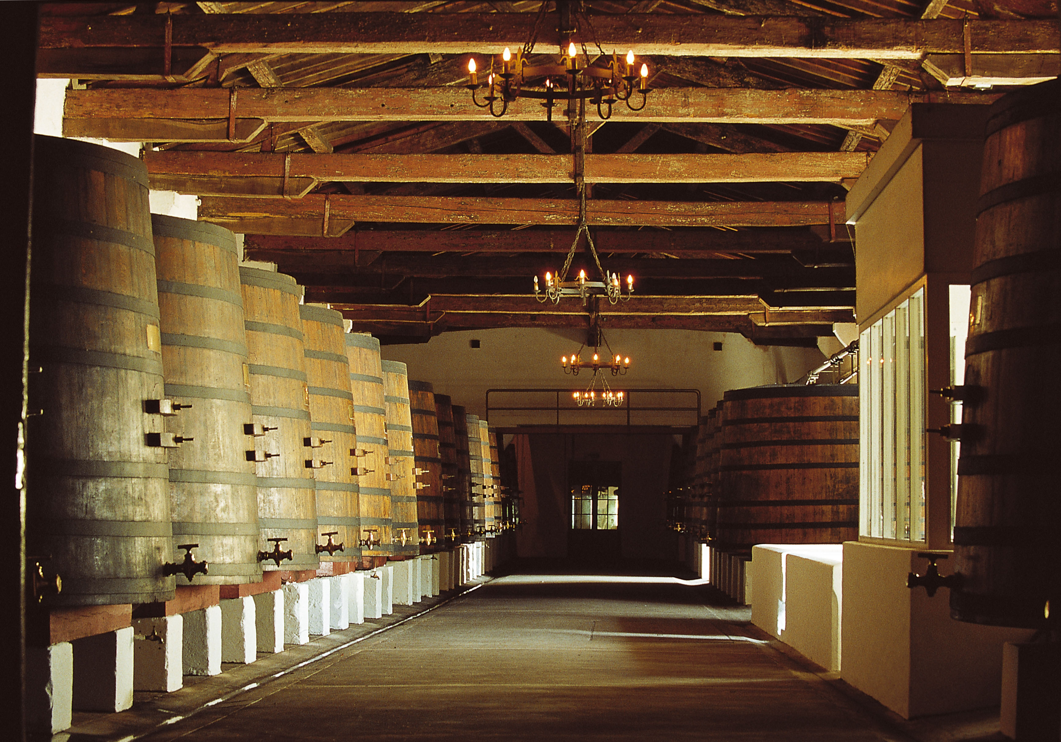 chateau margaux This margaux du château margaux is an honest reflection of the extraordinary  quality of the 2010 vintage: complex and deep on the nose, very pure, particularly .