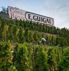 Guigal Cote Rotie 293x300 Rhone Wine Guide Everything you want to know about Cote Rotie