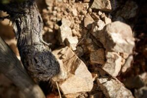 Hermitage Soil 300x200 Rhone Wine Guide Everything you need to know about Hermitage Wine