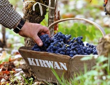 2011 Kirwan Philippe Delfaut Interview on the Harvest