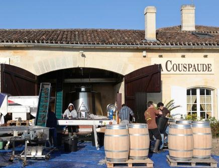 2011 Couspaude Harvest, Vanessa Aubert Interview