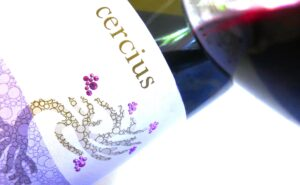 Cercius 300x185 Michel Gassier Cercius, A Rhone Value Wine To Purchase by the Case