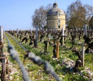 Latour 2011 Tower 300x262 2011 Chateau Latour On the way to Biodynamic in Pauillac