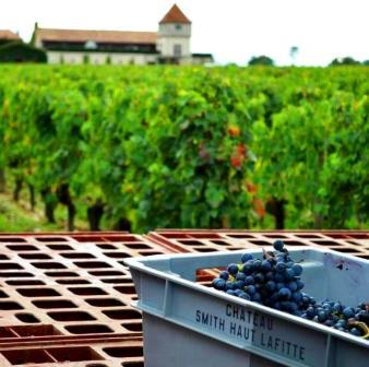2012 Smith Haut Lafitte Harvest