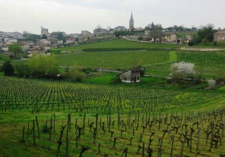 St. Emilion  Grand Cru Classe Wines