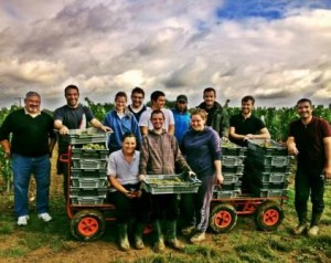 Dubreuil Chardonnay 300x238 With 2013 Chardonnay in Bordeaux is Being Produced in The Right Bank