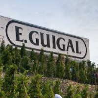 Guigal Sign Complete Guide to the Northern Rhone Wines, Wineries, Producers