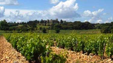 Southern Rhone Complete Guide to the Best Wines Wineries Appellations
