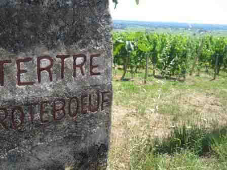 Tertre Roteboeuf 1 Tertre Roteboeuf St. Emilion Bordeaux Wine, Complete Guide